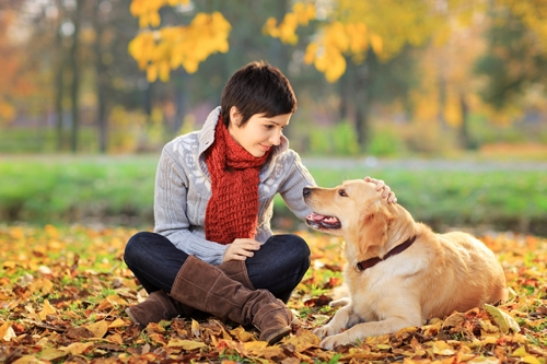 Tierbegleitete Therapie in den Heiligenfeld Kliniken