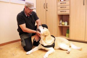 Tierbegleitete_Therapie_Parkklinik